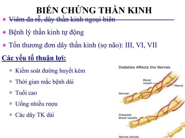 BIẾN CHỨNG THẦN KINH  Viêm đa rễ, dây thần kinh ngoại biên  Bệnh lý thần kinh tự động  Tổn thương đơn dây thần kinh (sọ...