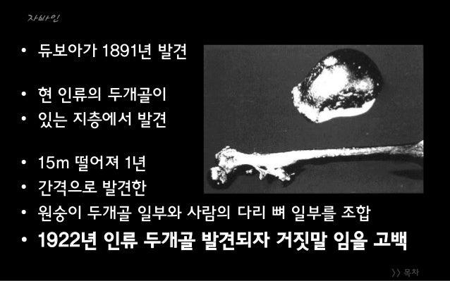 >> 목차 자바인 • 듀보아가 1891년 발견 • 현 인류의 두개골이 • 있는 지층에서 발견 • 15m 떨어져 1년 • 간격으로 발견한 • 원숭이 두개골 일부와 사람의 다리 뼈 일부를 조합 • 1922년 인류 두개골 발...