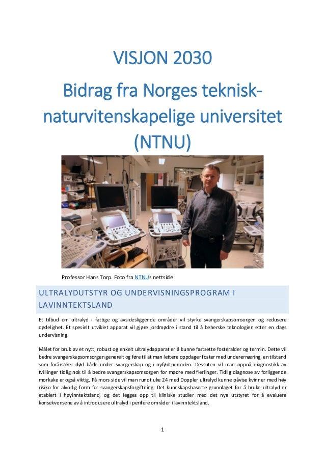 1 VISJON 2030 Bidrag fra Norges teknisk- naturvitenskapelige universitet (NTNU) Professor Hans Torp. Foto fra NTNUs nettsi...