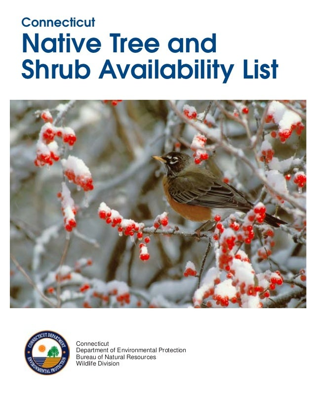 ConnecticutNative Tree andShrub Availability List        Connecticut        Department of Environmental Protection        ...