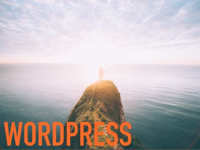 """""""ENSURE FREE ACCESS, IN PERPETUITY, TO THE SOFTWARE PROJECTS WE SUPPORT"""" WordPress Foundation"""