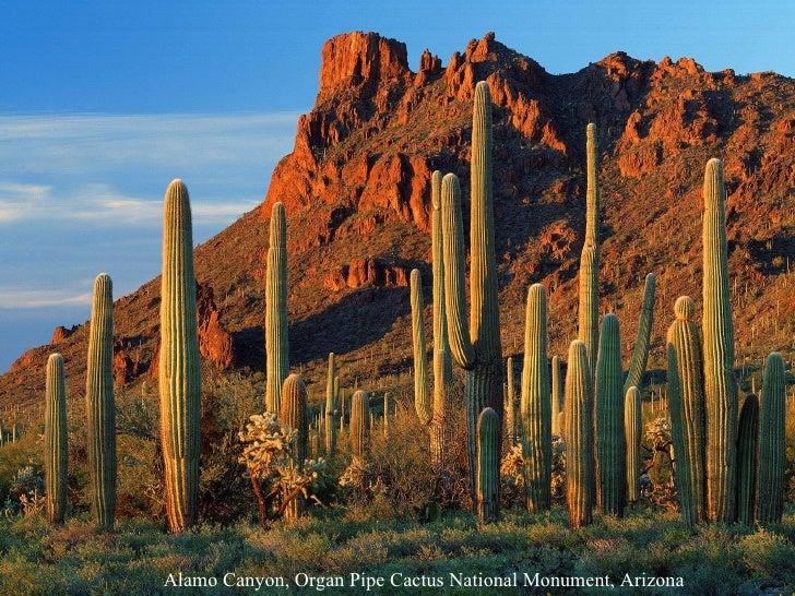 Beauty of Arizona Slide 3