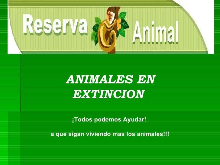 ANIMALES EN EXTINCION  ¡Todos podemos Ayudar!  a que sigan viviendo mas los animales!!!