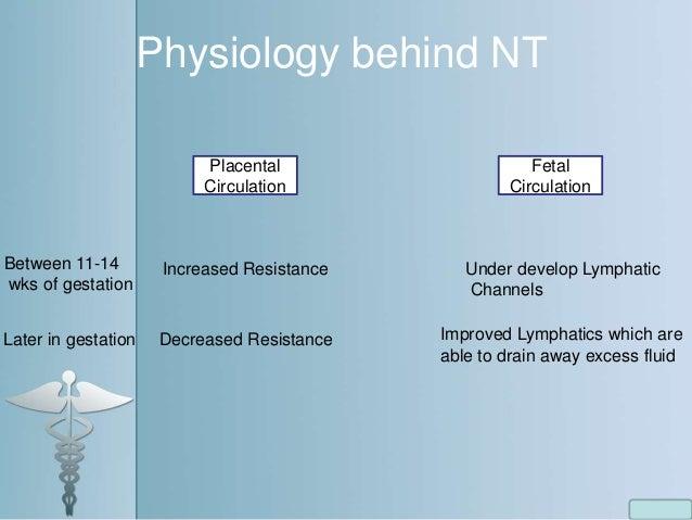 Physiology behind NT Placental Circulation Fetal Circulation Between 11-14 wks of gestation Increased Resistance Under dev...