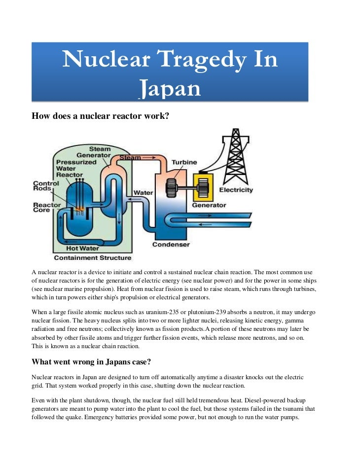 Nuclear Tragedy In JapanNuclear Tragedy In Japan                                                       <br />How does a nu...