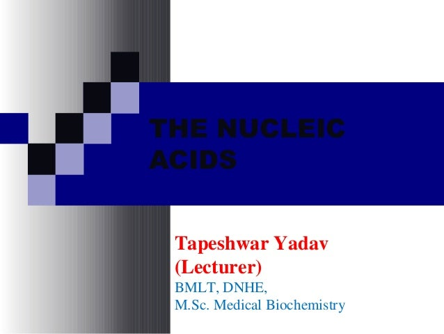 THE NUCLEIC ACIDS Tapeshwar Yadav (Lecturer) BMLT, DNHE, M.Sc. Medical Biochemistry