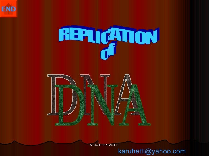 DNA REPLICATION  of  [email_address]