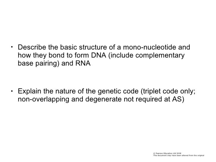 <ul><li>Describe the basic structure of a mono-nucleotide and how they bond to form DNA (include complementary base pairin...