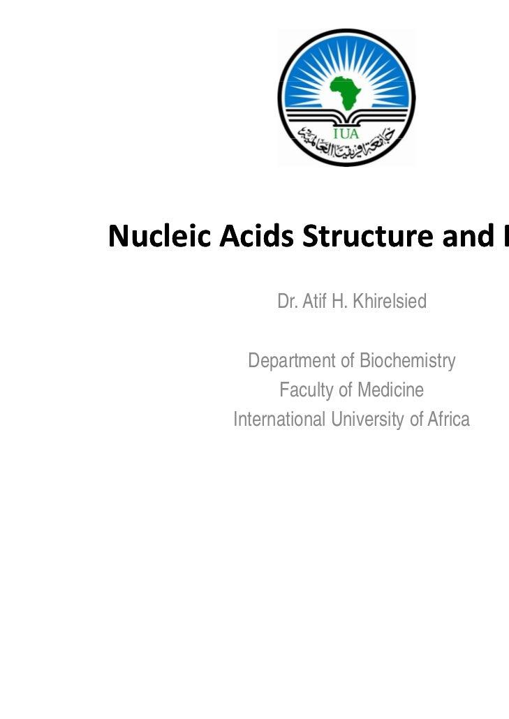 NucleicAcidsStructureandFunction              Dr. Atif H. Khirelsied          Department of Biochemistry             p...