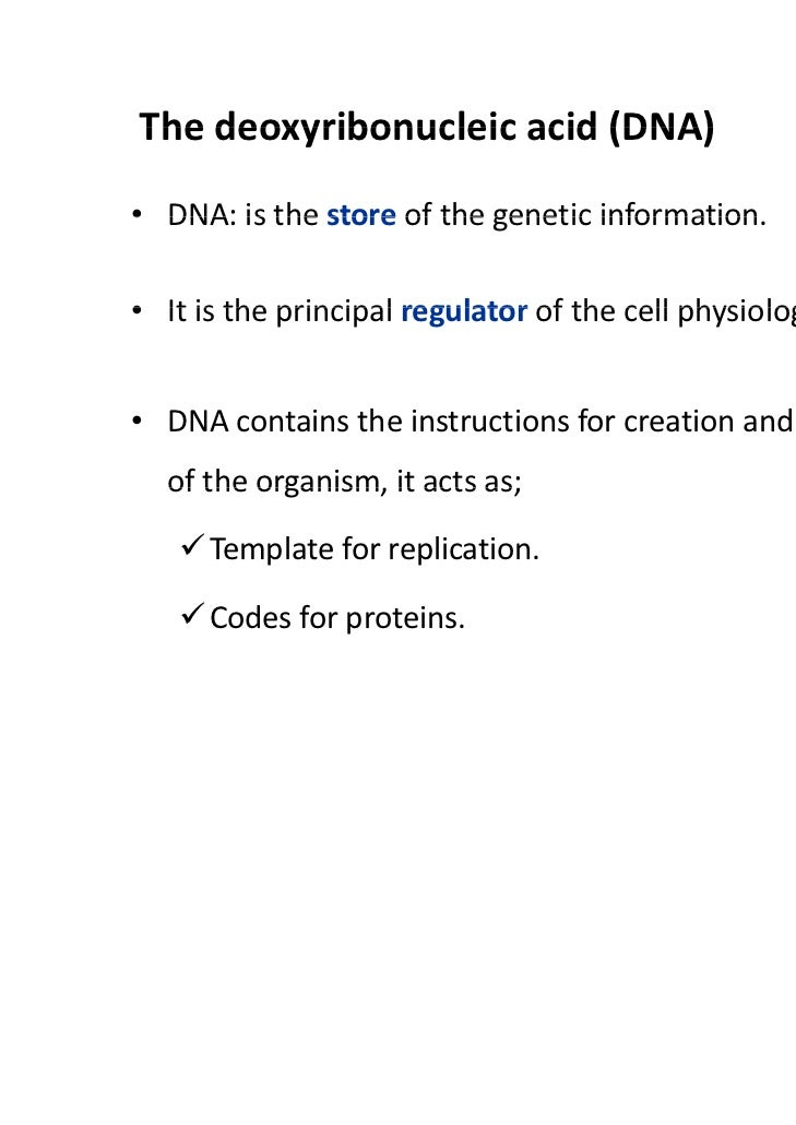 Nucleic Acids Structure and Functions – Nucleic Acid Worksheet