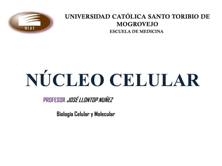 UNIVERSIDAD CATÓLICA SANTO TORIBIO DE                      MOGROVEJO                               ESCUELA DE MEDICINANÚCL...