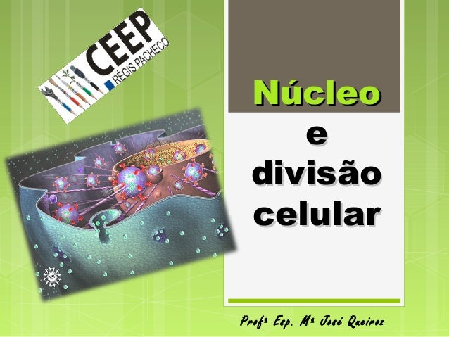 NúcleoNúcleo ee divisãodivisão celularcelular Profª Esp. Mª José Queiroz