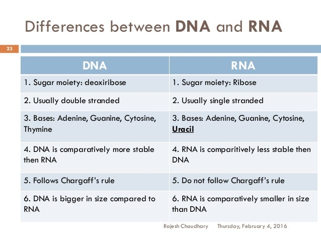 differences between dna and rna Dna and rna both carry genetic information, but there are differences between  them this is a comparison of the differences between dna.