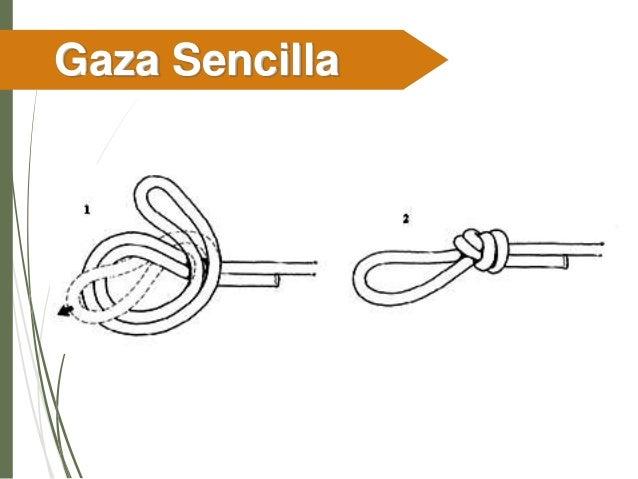 Gaza de Pescador