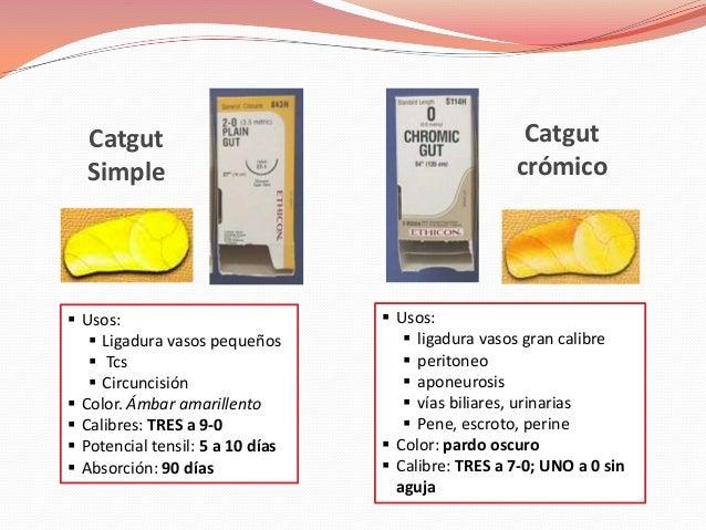 Catgut                                             Catgut  Simple                                            crómico Usos...