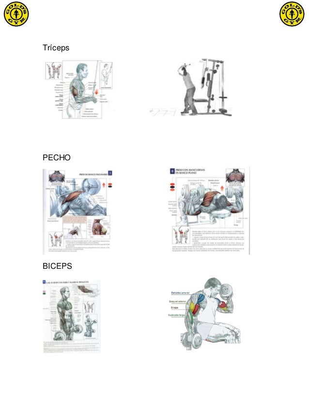 Las operaciones plásticas en el cuerpo y el pecho