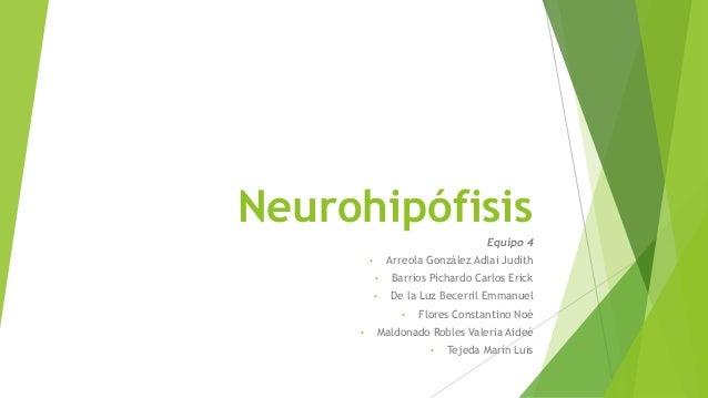 Neurohipófisis Equipo 4 • Arreola González Adlai Judith • Barrios Pichardo Carlos Erick • De la Luz Becerril Emmanuel • Fl...