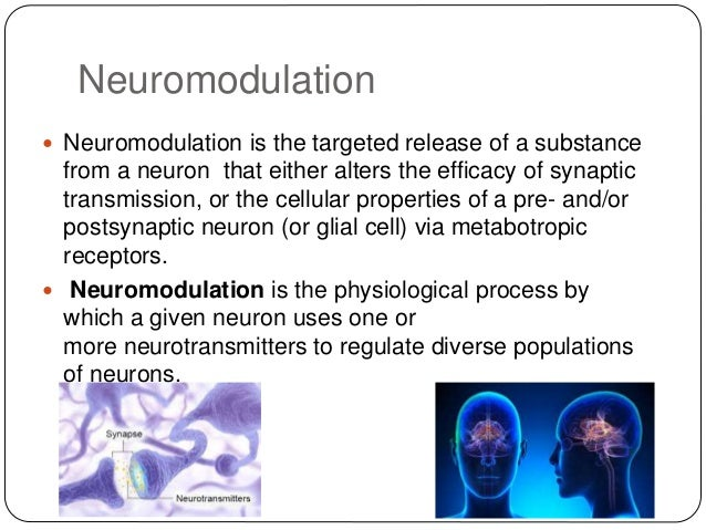 neuromodulation essay Abstract powerful ultrastructural tools are providing new insights into neuronal circuits, revealing a wealth of anatomically-defined synaptic connections.