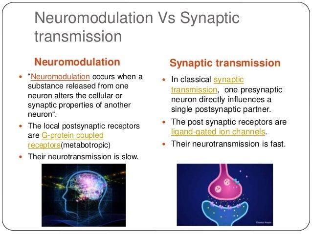 neuromodulation essay