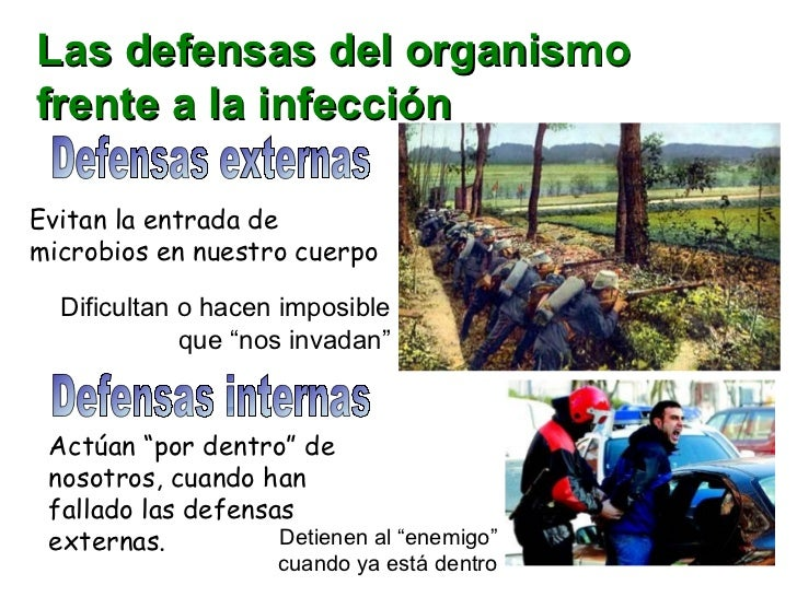 Las defensas del organismo frente a la infección Defensas externas Defensas internas Evitan la entrada de microbios en nue...