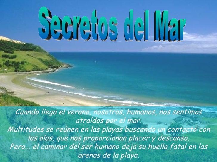 Secretos del Mar Cuando llega el verano, nosotros, humanos, nos sentimos atraídos por elmar. Multitudes se reúnen en las ...