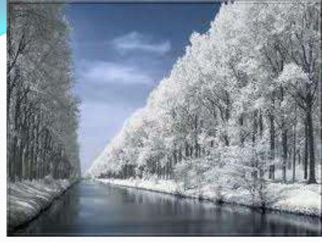 Nuestro Paisaje En Invierno