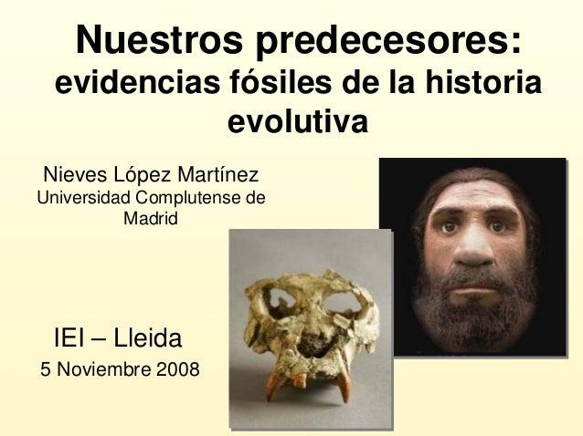 Nuestros predecesores: evidencias fósiles de la historia evolutiva IEI – Lleida 5 Noviembre 2008 Nieves López Martínez Uni...