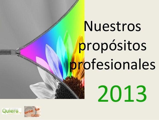 Nuestros propósitosprofesionales    2013