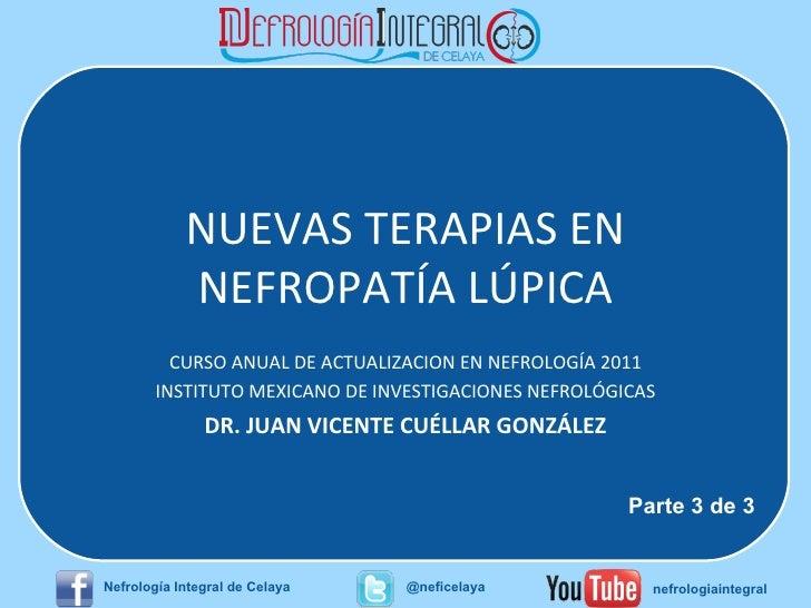 NUEVAS TERAPIAS EN NEFROPATÍA LÚPICA CURSO ANUAL DE ACTUALIZACION EN NEFROLOGÍA 2011 INSTITUTO MEXICANO DE INVESTIGACIONES...