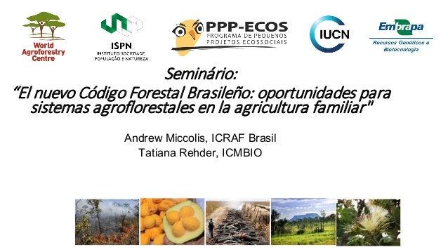 """Seminário: """"El nuevo Código Forestal Brasileño: oportunidades para sistemas agroflorestales en la agricultura familiar"""" An..."""