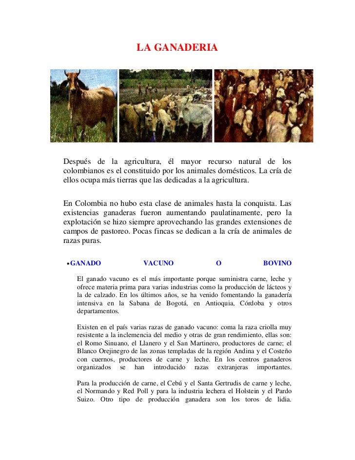 LA GANADERIA<br />Después de la agricultura, él mayor recurso natural de los colombianos es el constituido por los animale...