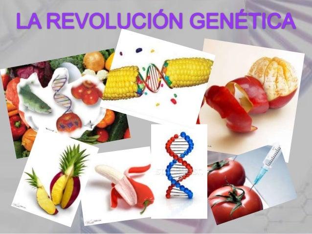 PAG.•   Introducción………………………………………………………………………….3•   Historia del ADN…………………………………………………………………….4•   Compuestos del ADN……...