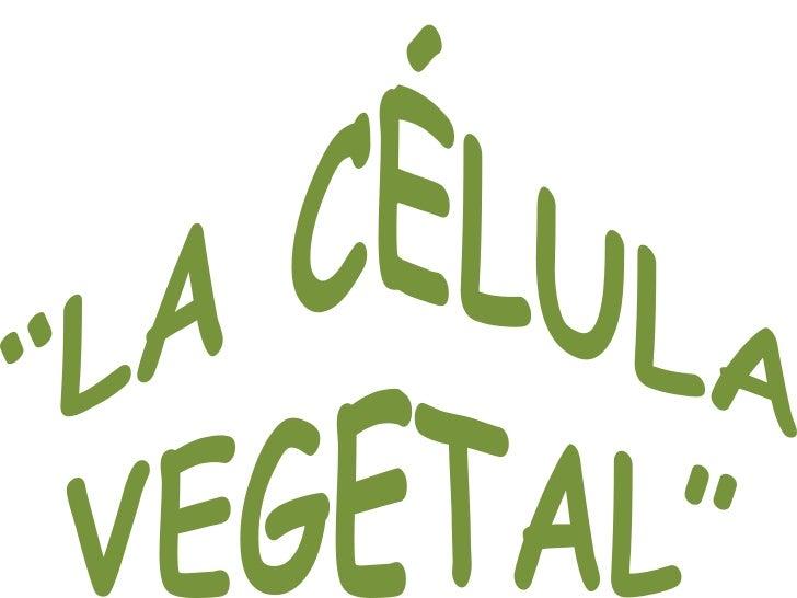 """LA CÉLULA VEGETAL""<br />"
