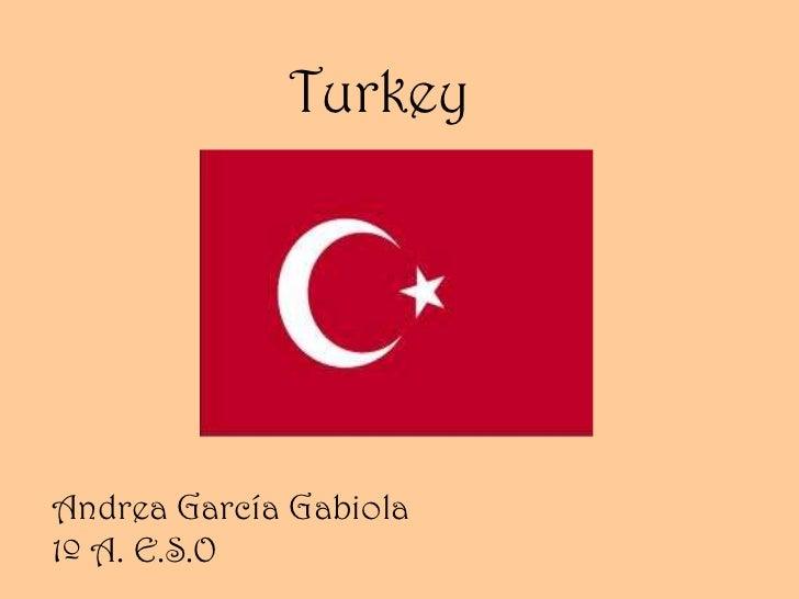 TurkeyAndrea García Gabiola1º A. E.S.O