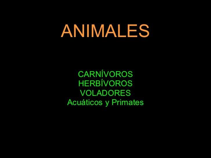 ANIMALES CARNÍVOROS HERBÍVOROS VOLADORES Acuáticos y Primates
