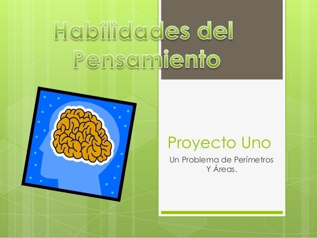 Proyecto Uno Un Problema de Perímetros Y Áreas.