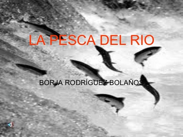 LA PESCA DEL RIO BORJA RODRÍGUEZ BOLAÑOS