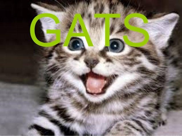 GATS GATS