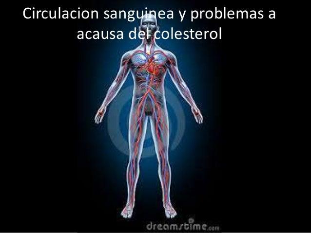 Circulacion sanguinea y problemas a acausa del colesterol