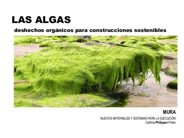 NUEVOS MATERIALES Y SISTEMAS PARA LA EJECUCIÓN Caritina Philippon Prieto LAS ALGAS MURA deshechos orgánicos para construcc...