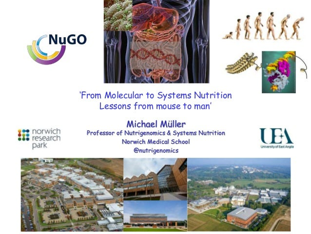 'From Molecular to Systems Nutrition Lessons from mouse to man' Michael Müller Professor of Nutrigenomics & Systems Nutrit...