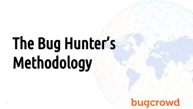 1 The Bug Hunter's Methodology