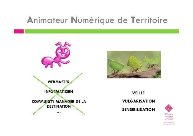 Animateur Numérique de Territoire WEBMASTER INFORMATICIEN COMMUNITY MANAGER DE LA DESTINATION … VEILLE VULGARISATION SENSI...