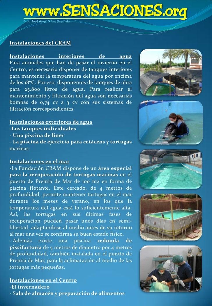 Revista de buceo sensaciones n 2 for Piscina municipal premia de mar
