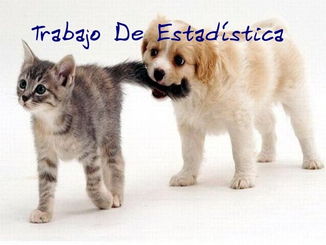 Trabajo De Estadísticas Mascotas. Trabajo De Estadística