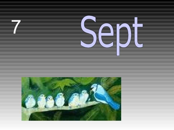7 Sept