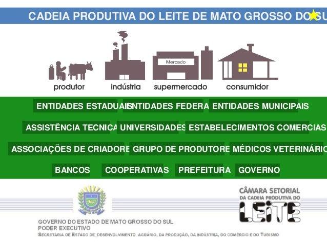 CADEIA PRODUTIVA DO LEITE DE MATO GROSSO DO SU GOVERNOPREFEITURACOOPERATIVASBANCOS ASSISTÊNCIA TECNICA UNIVERSIDADES ESTAB...