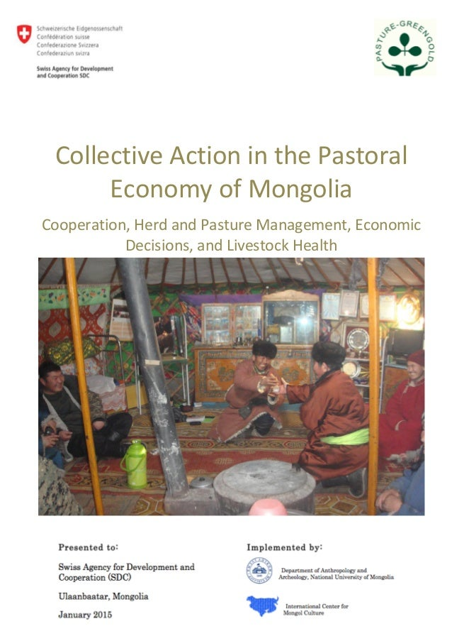 1 Collective Action in the Pastoral Economy of Mongolia Cooperation, Herd and Pasture Management, Economic Decisions, and ...