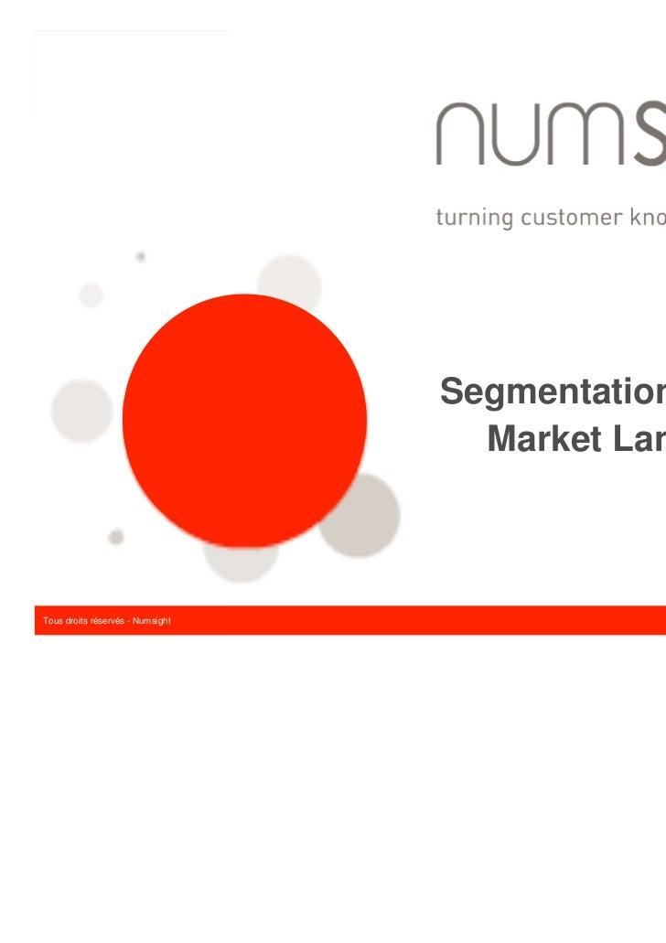 Segmentation stratégique                                    Market LandscapeTMTous droits réservés - Numsight             ...