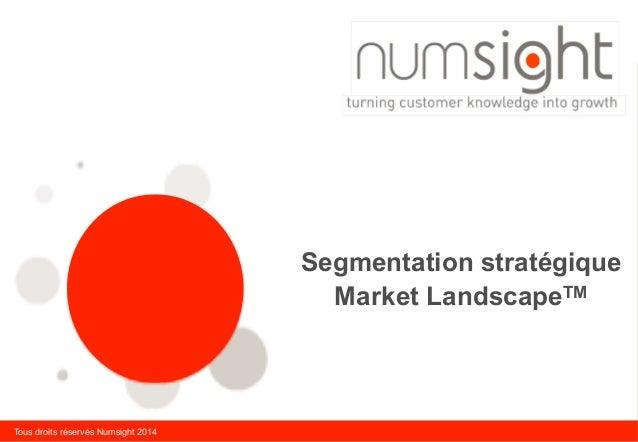 Tous droits réservés Numsight 2014 Segmentation stratégique Market LandscapeTM